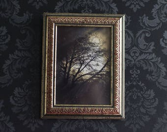 Gothic Wall Art Haunted Tree