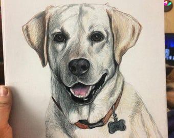 """9""""x12"""" Labrador Retriever"""