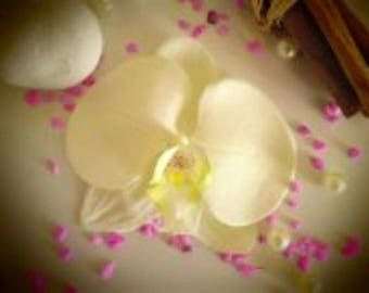 artificial ivory Orchid hair clip corsage clip
