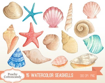 BUY 2 GET 1 FREE Watercolor Seashells Clip Art - seashell clipart - summer clipart - beach clipart - nautical clipart - Commercial Use Ok