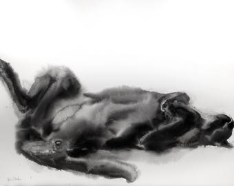 Rolling black cat - original watercolor painting