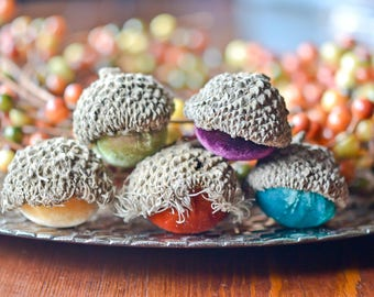 Silk Velvet Acorns in Various Colors, Real Acorn Caps, Set of 5 Large, Thanksgiving, Fall Decor, Table Centerpiece, Real Acorn Caps