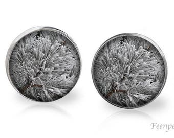 Stud Earrings Frosted 19