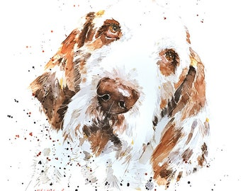 Spinone Soulful Eyes - Watercolour  Print A3 (30*40cm/16*12 Inches)