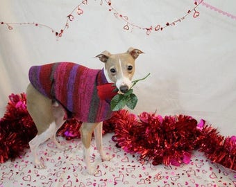 Italian Greyhound Sweater. Red & Purple Tie Dye. Italian Greyhound Clothing. Iggy. Dog Sweater. Dog Clothes.  Dog Clothing. Dog Apparel.