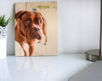 Pet Portrait Print, Dog Lover Gift,  Custom Pet Prints,  Print On Wood, Dog Photo Frame, Pet Photo, Pet Picture Frame, Pet Memorial Frame
