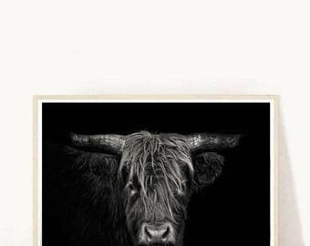 Highland Cow Print, Cow Printable, Cow Photo, Highland Cattle Print, Printable Art, Modern Wall Art, Digital Download, Wall Decor