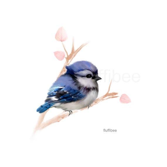 Blue jay painting baby bird print baby blue jay bird