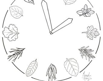 Does Anyone Know the Thyme Clock Illustration