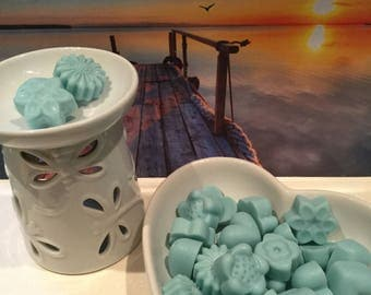 Driftwood Highly Fragranced Soy Wax Melts