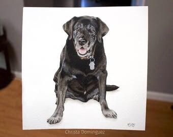 "Custom 10""x10"" Watercolor Pet Portrait"