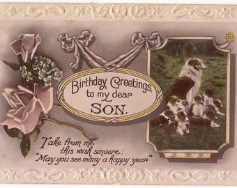 Vintage Real Photo Postcard,Birthday,COLLIE DOG and PUPPIES, c1920,Valentines Photo Colour