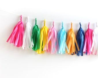 Happy Tissue Tassel Garland Kit - Bright Pink Rainbow