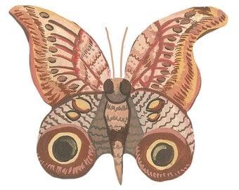Moth Vinyl Sticker
