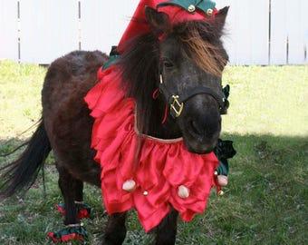 Elf Costume for Horses