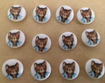 Button Beatrix Potter.