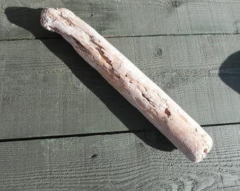Long Driftwood for your creations