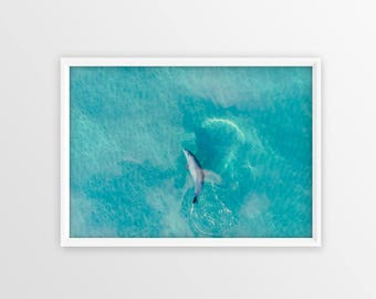 Dolphin Print - Wall Art, Print, Aerial Photography, Drone, Home Decor, Aerial, Poster, Digital Print, Beach Print, Beach Photography