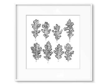 Leaf Drawing - Black and White Minimalist Art - Small Art - Contemporary Art Print - Nature Art - Minimal Home Decor - Giclee