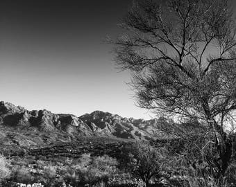 Palo Verde Mountain Original Print By Tommy Dominick Arizona Catalina Mountains Monsoon Summer Wall Art Signed Print