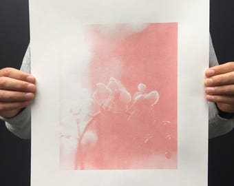 Pink Orchid Hand Pulled Screenprint Eco Friendly Inks and Recycled Paper Stock