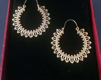 Modish Design Earrings