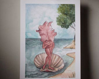"""The Birth of Porphyra Poster (11x17"""")"""