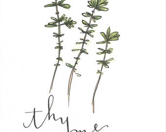 Thyme Watercolor
