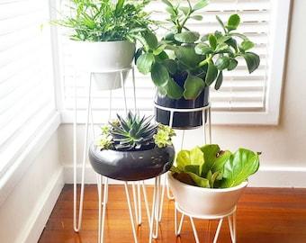 Plant Stand, Hoop Plant Stand, Metal Plant Stand