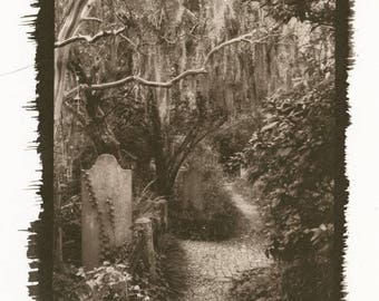 Grave Lined Path in A Southern Cemetery Palladium Toned Kallitype Matted Photograph