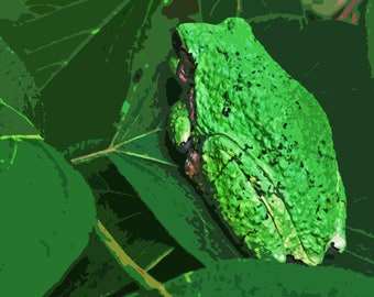 Green Tree Frog Abstract  --INSTANT DOWNLOAD--