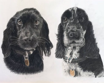 Custom pet portrait - A3 pet pair, coloured pencil, Christmas gift, Birthday gift, Personalised gift, Dog Lover, Cat Lover