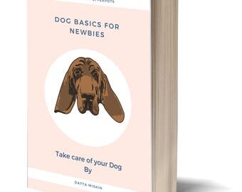 Dog Basics For newbies
