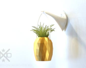 Hanging planter, Pineapple Planter, air plant holder, hanging planter, hanging air planter, Window planter, air planter, hanging air plant