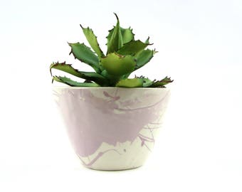 Small Planter with Pink Decoration