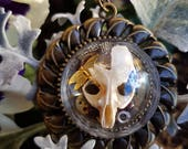 Real Rat Skull Necklace in Bronze - Taxidermy Steampunk Memento Mori Jewelry - Caroline