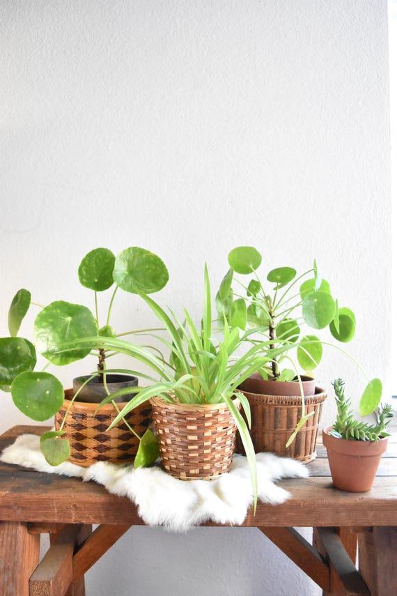 set of 3 small woven rattan basket planters