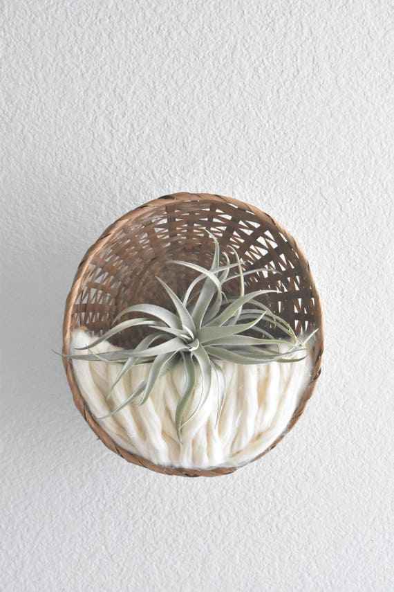handmade woven wall hanging fiber art air plant hanger / plant holder