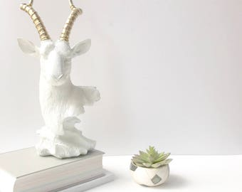 WHITE GOLD Antelope Animal Bust Statue for Table top Office decor / Office decor Adventure Nature Wildlife decor Animal Sculpture