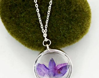 Real Wildflower Pendant Necklace -  Blue Bachelor Button Petals - Jewelry - Silver - Gift Under 25 For Her - R009