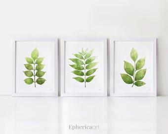 Botanical art Set of 3 leaves Printable art prints Set of 3 wall art, Printable decor Green plants art, Wall decor Digital prints 5x7, 8x10
