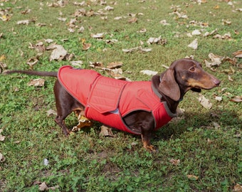 Dog Coat with underbelly protection - Dachshund Winter Coat - Custom made dog clothes - Waterproof / Fleece Dog Jacket - MADE TO ORDER