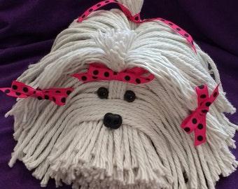 Mop Dog - Havanese - Shih Tzu - Maltese - Lhasa Apso - Bichon - White Dog - Schnauzer - Coton De Tulear - Terrier - Lowchen - Pound  Puppy