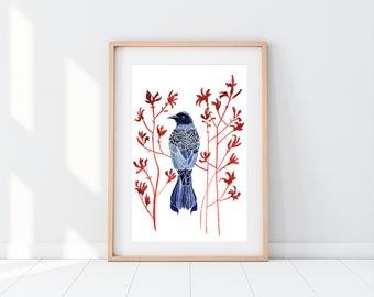 Indigo Spangled Drongo and Kangaroo Paw, L/Edition museum grade fine Art Giclée print, Australian, bird print, Native flowers, feathers,