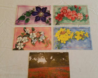 5 unused floral postards collection - harlequin post cards canada 1997 wallflower clematis periwinkle red flowers art pictures photos f1