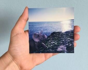 Beachsaurus no01 - also of Dinos need shiny holiday - Polaroid print, photography on ALU-Dibond 9 × 9,