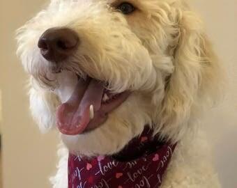 Dog Bandana - Valentine's Day Love and Hearts