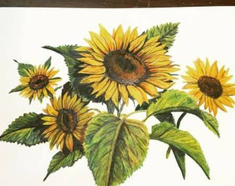 Sunflowers Picture. 8x10 Picture. Watercolor Pencil Art. Sunflowers Wall Art.  Floral Decor