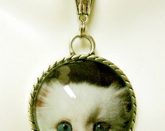 Peek-a-boo white kitten pendant with chain - CAP26-015