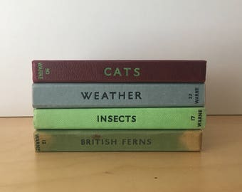Vintage Observer's Books- Insects- British Ferns- 1960s/70s